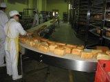 深圳力斯 啤酒输送系统 链板输送机 饮料输送系统 空瓶输送系统