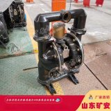BQG125/0.45氣動隔膜泵
