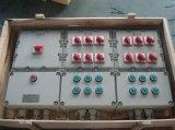 防爆照明(动力)配电箱CBP51/BXMD51