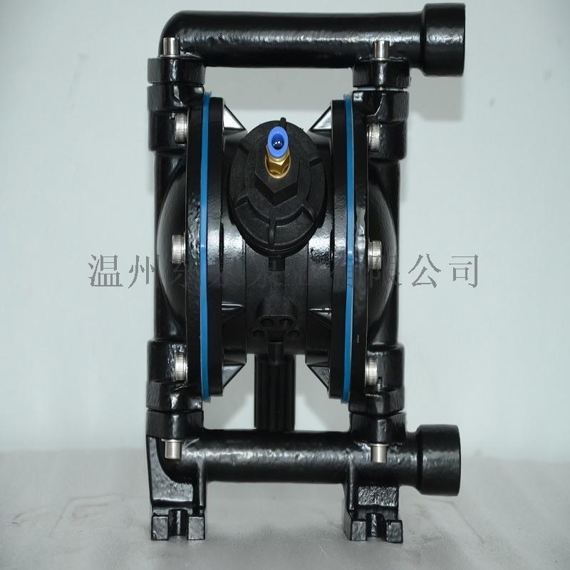 厂家铸铁隔膜泵 瓯北隔膜泵 新型隔膜泵