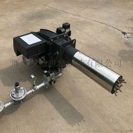 环保锅炉改造超低氮燃烧器天然气燃烧机