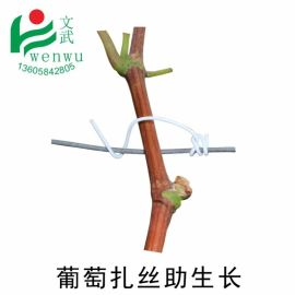 文武包装 葡萄枝蔓扎丝葡萄架捆带   代园林扎丝山葫芦蔓铁扎丝