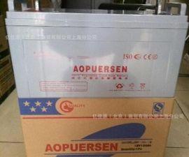 奧普森12V100AH蓄電池