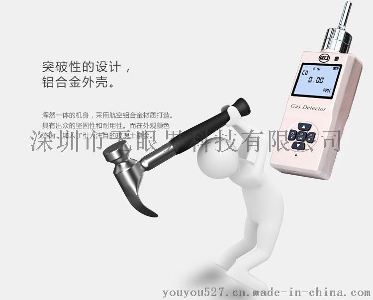 便携式二氧化**体检测仪