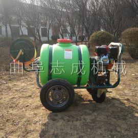直供园林用远射程汽油高压打药机手推式喷药机轻便型喷雾机