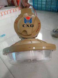 SBD1102-YQL40A, 管吊式粉尘防爆灯