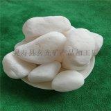 玄光矿产品厂家供应白色鹅卵石   洗米石