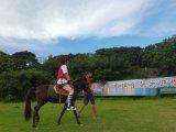 深圳騎馬休閒騎