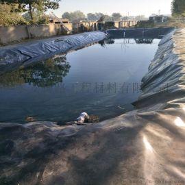 厂家直销垃圾填埋水产养殖HDPE渠道防渗土工膜