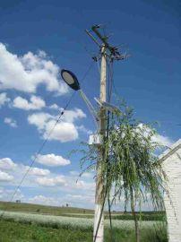 兴安盟太阳能路灯提供LED路灯品牌太阳能灯分类