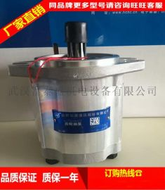 合肥长源液压齿轮泵CBHT-F316-扁右法兰