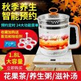 久盛丰养生壶全自动加厚玻璃煮茶中药花茶壶黑茶壶