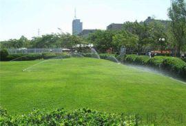 河南人造草坪护栏厂家 绿化室外幼儿园  草坪