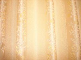 窗帘布(119-13)