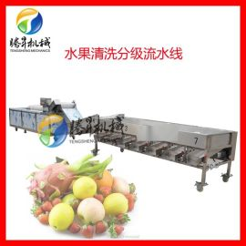 水果清洗分級機 百香果分果機 檸檬柑桔分級機