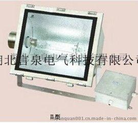 FAT-G-L250W不鏽鋼三防泛光燈