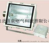 FAT-G-L250W不锈钢三防泛光灯