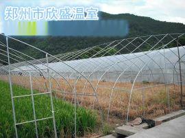 郑州新型温室大棚造价