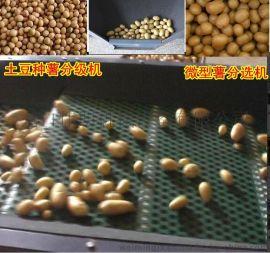 伟明FXJ系列筛网式微型薯筛选机