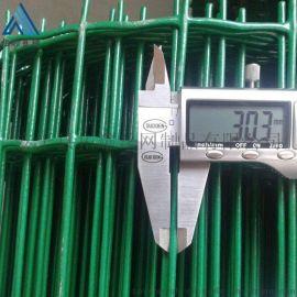 涂塑电焊荷兰网厂 养鸡铁丝网围栏
