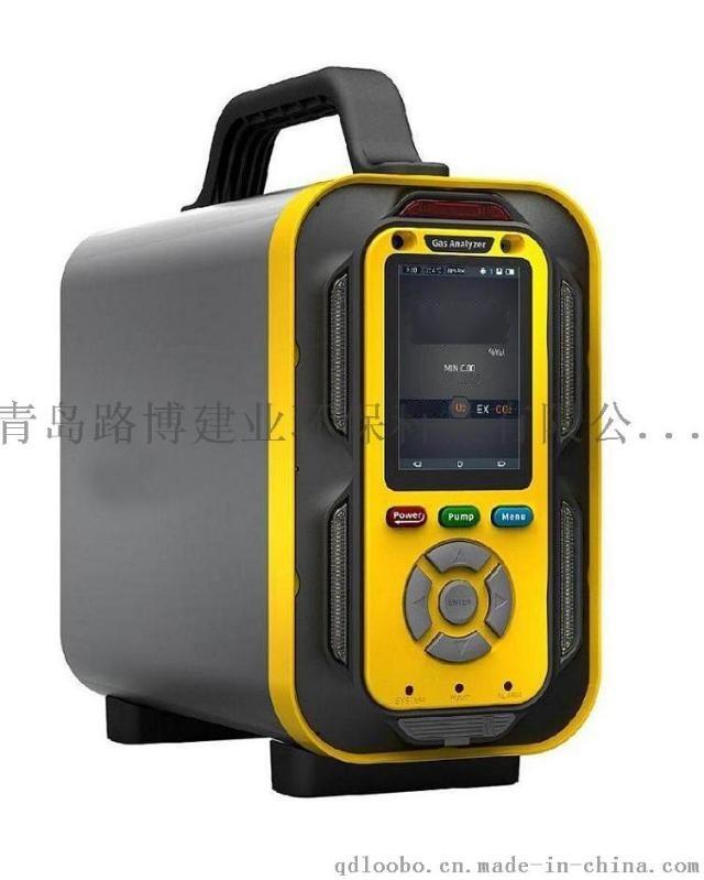 厂家直销LB-MT6X泵吸手提式**一气体分析仪