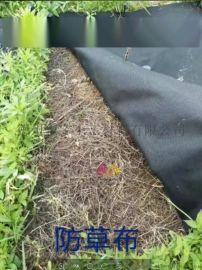 防草布抑草布,农用除草无纺布绿化园艺地布