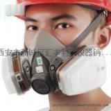 西安6200防护面具13659259282
