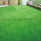 海口球場草皮,屋頂裝飾草皮,環保美觀