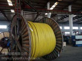 供应耐火1KV-NH-VV 3*50齐鲁电缆