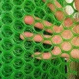 绿色塑料平网@菏泽绿色塑料平网生产厂家
