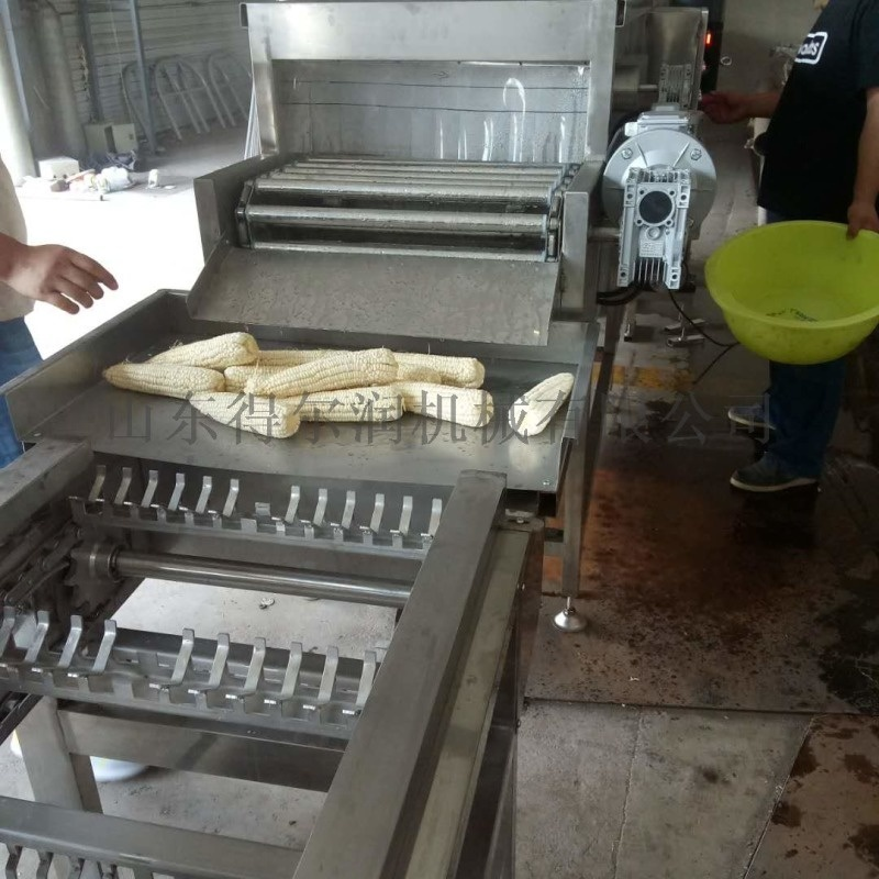 定做速凍玉米加工成套設備 玉米清洗機 漂燙蒸煮機