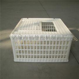 蛋鸡运输笼  大鸡转运笼  折叠周转筐