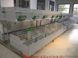 兔笼子厂家直销 商品兔笼价格 热镀锌兔笼子