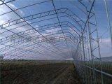 日光溫室建造方法產品的區分鑑別方法