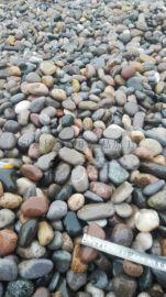 河北鹅卵石园艺装饰    永顺水处理砾石滤料