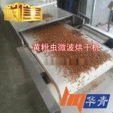 廠家供應 出口黃粉蟲乾燥機價格 均勻微波加熱 隧道式微波乾燥機