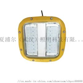 抛光间_60W防爆灯LED工矿灯