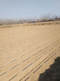 膜下滴灌厂家 内蒙古赤峰克什迷宫滴水带系统