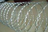 刺绳网、刀片刺绳网、热镀锌铁丝生产使用寿命长久