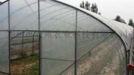 塑料薄膜连栋温室大棚建设
