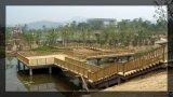 膠州戶外木棧道 景觀防腐木平臺