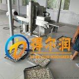 隧道式DFG300芝士年糕裹粉机 自动上面包糠机器