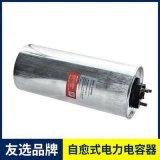 友选  自愈式电容器 EQ5C450P3C