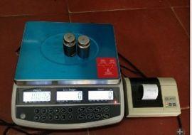 台衡惠而邦QHC计数功能微型打印秤 惠而邦电子秤 微型打印电子称