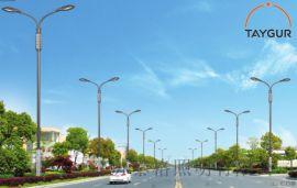 泰格LED照明,方管熱鍍鋅路燈,8米新農村道路照明