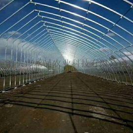 泊头市丞昊温室大棚几字钢几型钢蔬菜大棚养殖大棚