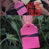 供应 大棚用标签  塑料吊牌  pvc标签牌
