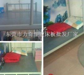 员工宿舍专用防臭虫塑料床板