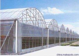 五合新型圆拱型连栋温室