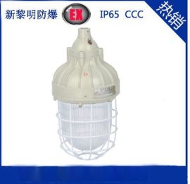 ccd93防爆照明灯,防爆节能灯,隔爆型防爆灯